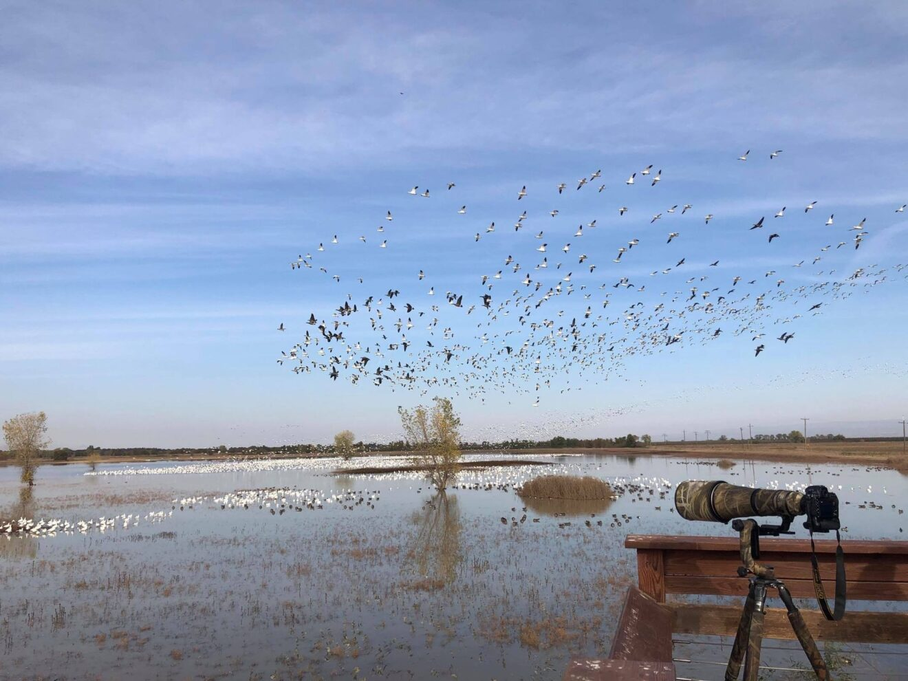 Exploring Butte County with California Watchable Wildlife