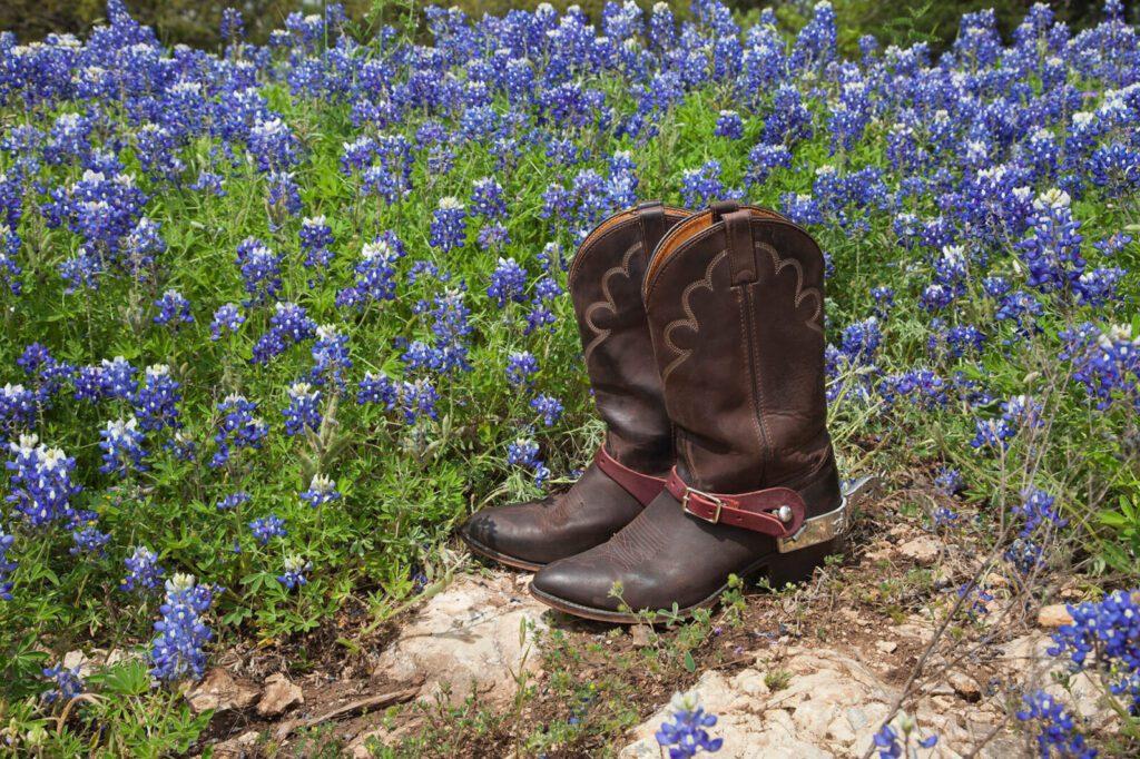 cowboy boots in a field of bluebonnets
