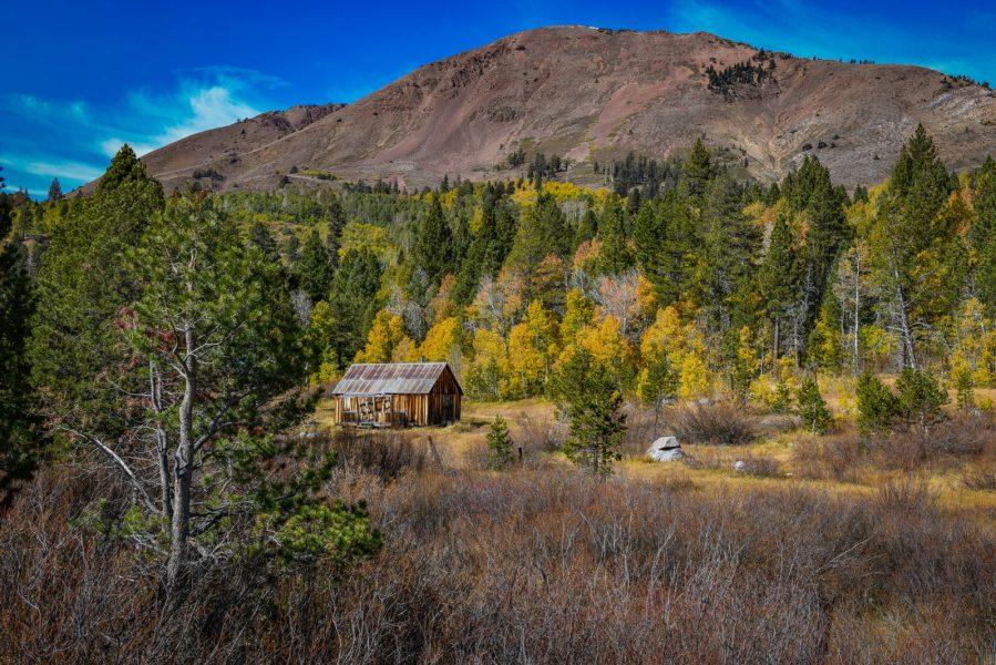 Red Lake Creek Cabin. Photo: John Poimiroo
