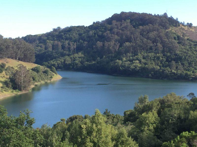 View of Lake Chabot by Matt Johanson
