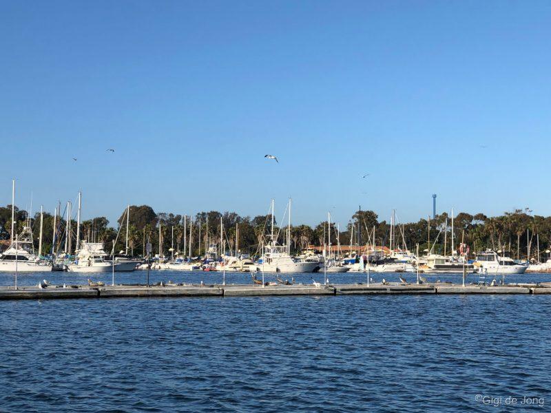 Mission Bay Park, San Diego. Photo: Gigi de Jong