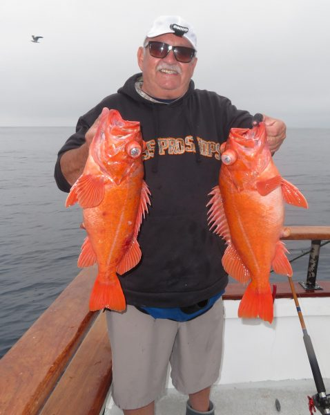 WON CHARTER REGULAR David Castro with a pair of reds he boated on a double while fishing squid at 200-feet plus alongside San Nicolas Island.